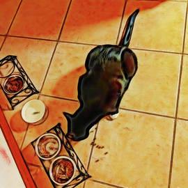 Midnight Snack by Jane Spaulding