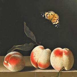 PG REPRODUCTIONS - Three peaches on ledge