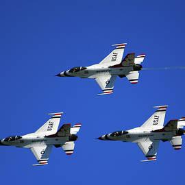 Three Thunderbirds by Raymond Salani III