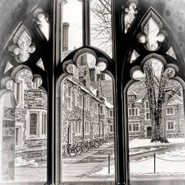 Geraldine Scull - Through a Gothic framed window at Princeton University