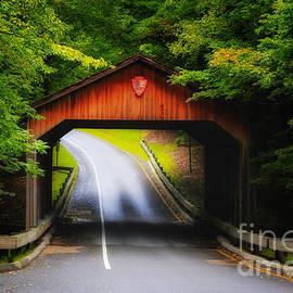 Rachel Cohen - Through the Covered Bridge