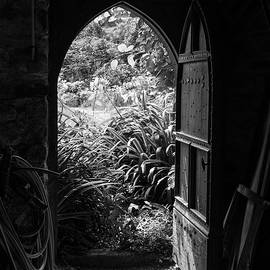 Through The Door by Clare Bambers