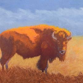 Nancy Jolley - Thunder on the Prairie