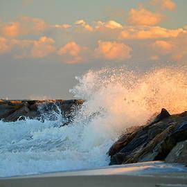 Dianne Cowen - Tidal Energy - Cape Cod Bay