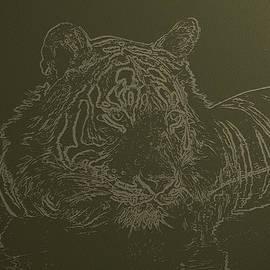 Manjot Singh Sachdeva - Tiger A Gentle Animal