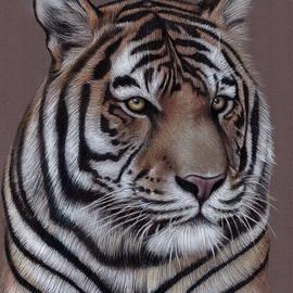 Jonathan Anderson - Tiger Close up
