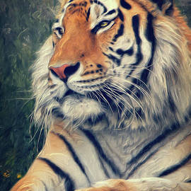 Angela Doelling AD DESIGN Photo and PhotoArt - Tiger No 3