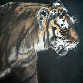 Stephanie Endsley - Tiger Stroll