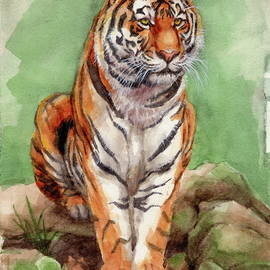 Margaret Stockdale - Tiger Watercolor Sketch
