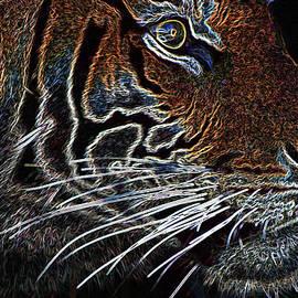 Miroslava Jurcik - Tiger