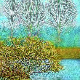 Joel Bruce Wallach - Timeless Flow