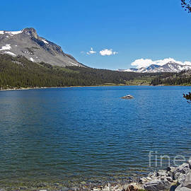 Tioga Lake Ca by Cindy Murphy - NightVisions