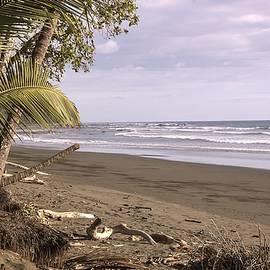 Tiskita Pacific Ocean Beach by NaturesPix