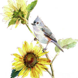 John Keeling - Titmouse with Sunflower