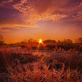 To See and Feel Forever by Phil Koch
