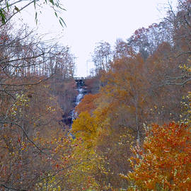 Top of Amicalola Falls by Pat Turner