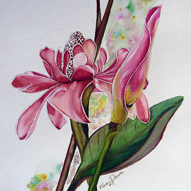 Torch Ginger  Lily by Karin  Dawn Kelshall- Best