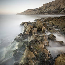 William Dunigan - Torrey Pines Rocky Shore