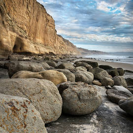 Torrey Pines Small Stones by William Dunigan