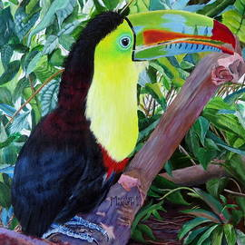 Toucan Portrait 2 by Marilyn McNish