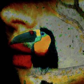 Diana Coatu - Toucan Whisper