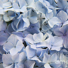 Touch of Blue by Mary Ann Artz