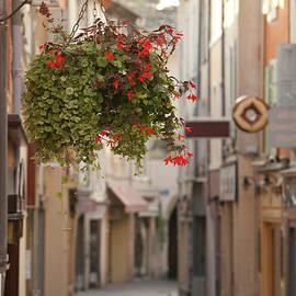 Tourbon France by John Magyar Photography