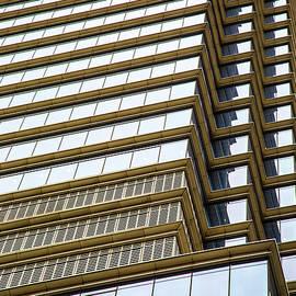 Karol Livote - Towering Windows