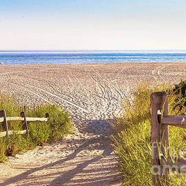 Colleen Kammerer - Tracks in the Sand - Cape May