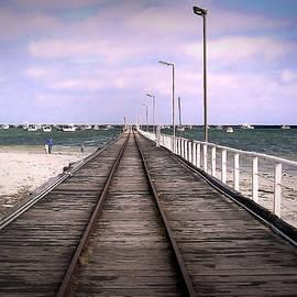 Tracks Into The Sea by Eena Bo
