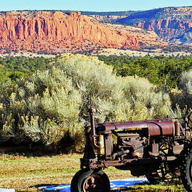 Tractor on Fertile Ground? by David Thompson