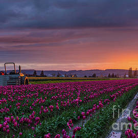Mike Reid - Tractor Waits For Morning