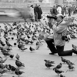 David Wenman - Trafalgar square