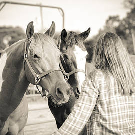 Training The Horses In Sepia by Kelly Hazel