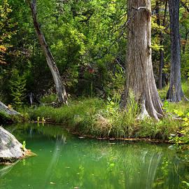 Mark Weaver - Tranquil Green Pool