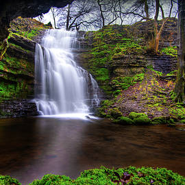 Tranquil Slow Soft Waterfall by Dennis Dame