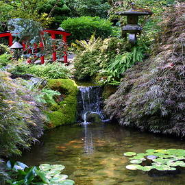 Tranquility in a Japanese Garden by Laurel Talabere