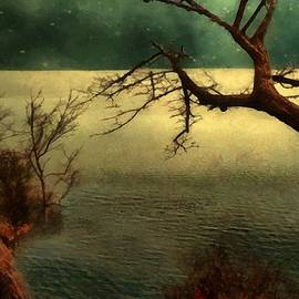 RC deWinter - Tranquillity Bay