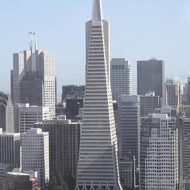 Transamerica Pyramid In San Francisco by John Telfer