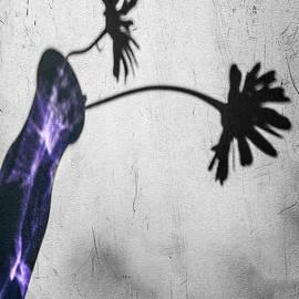 Cathy Kovarik - Translucent Purple