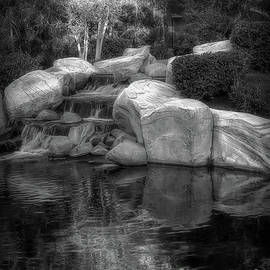 Mike Nellums - Tree and Waterfall BW
