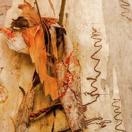 Lexa Harpell - Tree Bark Series - Scribbly Gum #3