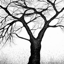 Bogdan Petrila - Tree