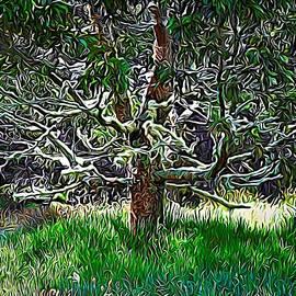 Tree of Life by Heidi Fickinger