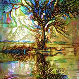 Lilia D - Tree reflections