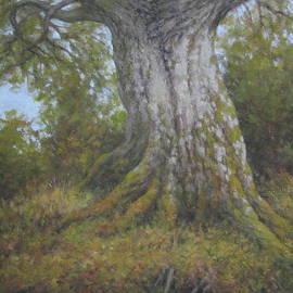 Stephen Howell - Tree