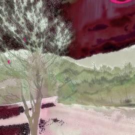 Tree Witness to Lake at Dawn by Zsanan Studio
