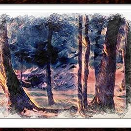 Debra Lynch - Trees At Big Creek