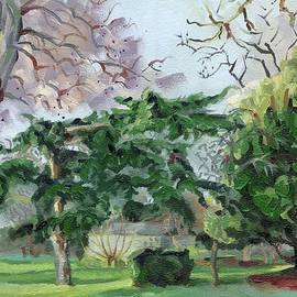 Trees by Manor House Gate Finsbury Park London
