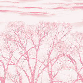 Trees Silhouette Pink by Jennie Marie Schell